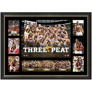 HAWTHORN PREMIERS TRIBUTE FRAME 'THREE-PEAT'