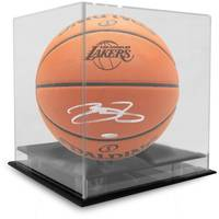 LeBron James Signed Basketball1