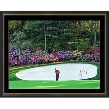 Tiger Woods Signed 'Azalea'
