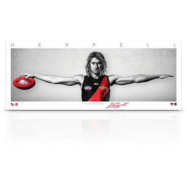 Dyson Heppell Mini Wings