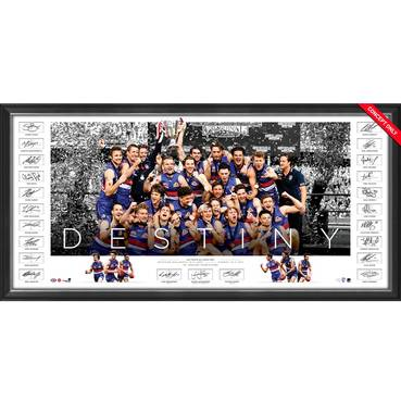 Western Bulldogs 2016 AFL Premiers Team Signed Icons Series